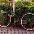Old bicycle parked on the street in Rome, Italy — Stock Photo #76769949