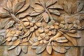 Frangipani flowers on wall — Stock Photo