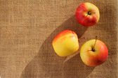 Top view of small gala apple over sack. — Stock Photo