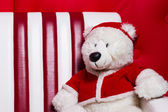 Christmas bear on the couch with a cap of Santa Claus — Fotografia Stock