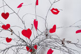 Red hearts hanging on a tree branch. Valentines Day — Stock Photo