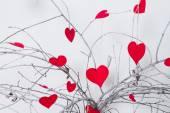 Red hearts hanging on a tree branch. Valentines Day — Φωτογραφία Αρχείου