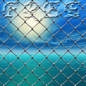 Freedom - Link fence over sunny sky and sea — Stockfoto