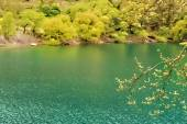 Mountain Lake View - Watercolor — Stock Photo
