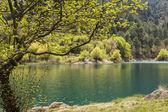 Mountain Lake View — Stock Photo
