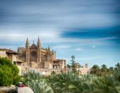 Cathedral of Majorca — Stock Photo