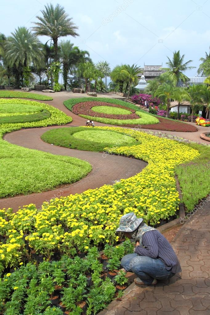 Bel am nagement paysager dans un jardin tropical photo for Amenagement jardin tropical