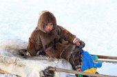 The young reindeer breeder sits on sledge — Stock Photo