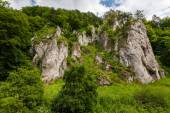 Rock formations in the greenery — Stockfoto