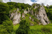Rock formations in the greenery — Стоковое фото
