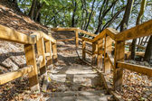 Wooden stairs on the tourist trail — Stock Photo