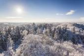 The observation tower on a hill in the winter forest — Stock Photo