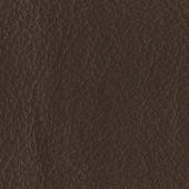 Leather texture — Stockfoto