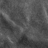 Kůže textury — Stock fotografie