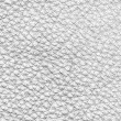 Old white leather texture — Stock Photo #54718743
