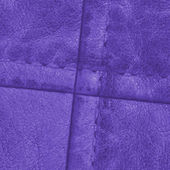 Violet leather clothing accessories — Stockfoto