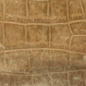 在蛇皮的旧棕色皮革货物。 — 图库照片