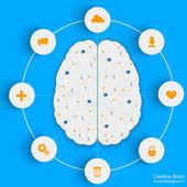 Brain info — Stock Vector