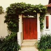 Comfy cottage with curly plant on walls — Stock Photo