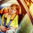 Small girl sleeps in car — Stock Photo #70929685