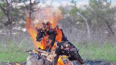 Bright Hot Bonifire Medium Shot — Stock Video