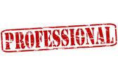 Professional — Stock Vector