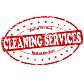 Cleaning services — Stock Vector