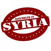 Assembled in Syria — Stock Vector