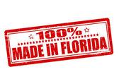 Sto procent dokonanych na Florydzie — Wektor stockowy