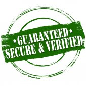 Guaranteed secure and verified — Stock Vector
