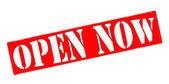 Open now — Stock Vector