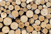 Pile of chopped fire wood prepared for winter, background — Stock Photo