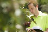 Horticulturist checking his appletrees on his farm — Stock Photo