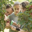 Two young female students learning about fruit and vegetables — Stock Photo #69200681