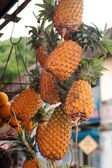 Ananas bunch hanging at market — 图库照片