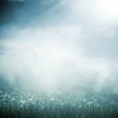 Morning fog — Stock Photo