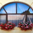 Window decoration with flowers — Stock Photo #52108429