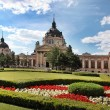 Постер, плакат: Szechenyi Medicinal Bath in Budapest Hungary is the largest me