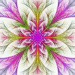 Beautiful multicolor fractal flower. Collection - frosty pattern — ストック写真
