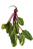 Funny portrait made from beet — Stok fotoğraf