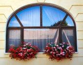 Window decoration with flowers — Stock Photo