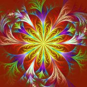 Beautiful multicolored fractal flower. Collection - frosty patte — Stock Photo