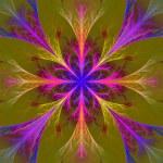 vackra multicolor fraktal blomma. kollektion - frosty mönster — Stockfoto #63474971