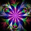 Beautiful multicolored fractal flower. Collection - frosty patte — Zdjęcie stockowe #63474999