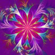Beautiful multicolored fractal flower. Collection - frosty pattern. Computer generated graphics. — Stockfoto #74832725