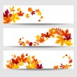 Vector banners with colorful autumn leaves. — Stock Vector #54004625