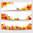Vector banners with colorful autumn leaves. — Stock Vector #54004627