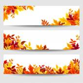 Vector banners with colorful autumn leaves. — Stok Vektör