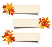 Vector beige banners with colorful autumn leaves. — 图库矢量图片
