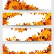 Vector banners with orange pumpkins and autumn leaves. — Stock Vector #54955239